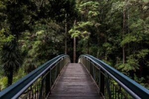 Byg bro mellem motivation og vedholdenhed